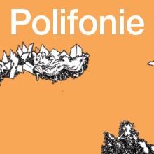 Grafika promocyjna, napis polifonie na pomarańczowym tle