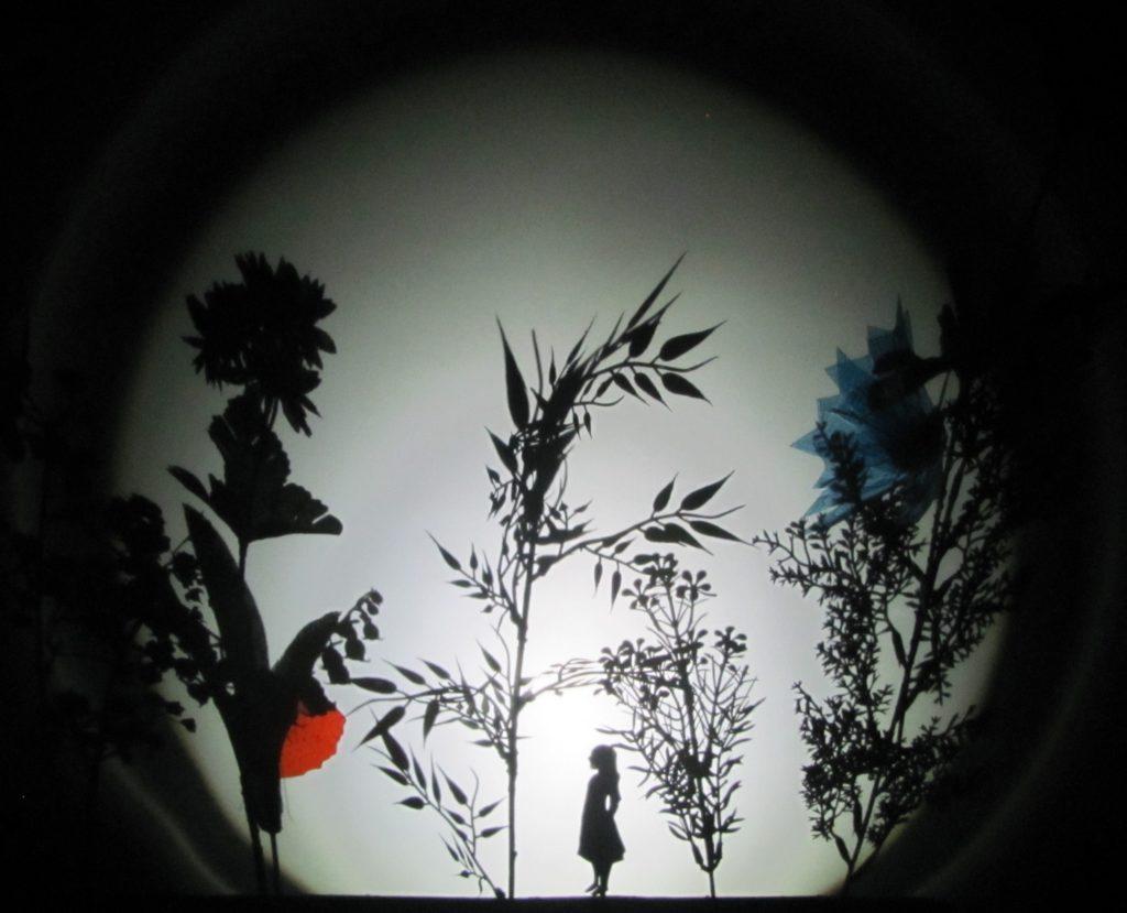 na jasnej ścianie widać czarne cienie czterech roślin polnych. Pomiędzy nimi widać cień małej dziewczynki, cztery razy niższej od roślin.